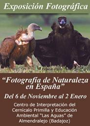 "CPN- DEMA organiza la exposición ""Fotografía de Naturaleza en España""."