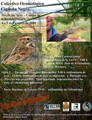 Participa en las actividades del Día Mundial de las Aves