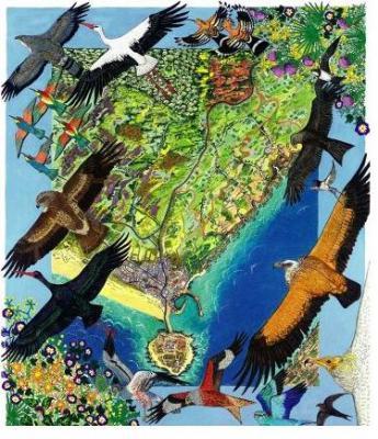 CPN- COCN promueve el ecoturismo internacional de observación de aves en el Estrecho