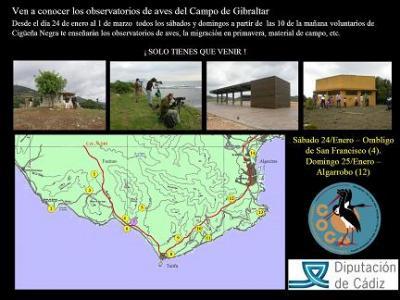 Conoce los observatorios de aves del Campo de Gibraltar de la mano del CPN- COCN
