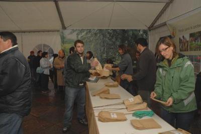 El Fapas repartirá gratuitamente 5.000 cerezos en la plaza de la Catedral de Oviedo